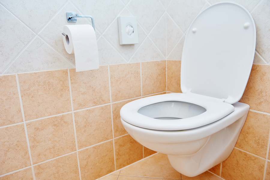 Should You Consider A Wall-Mounted Toilet?