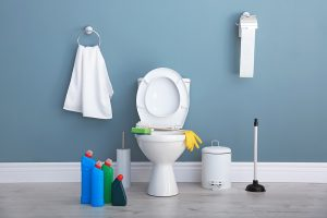 Bowie Plumber - 2 Tools To Keep For Your Bathroom